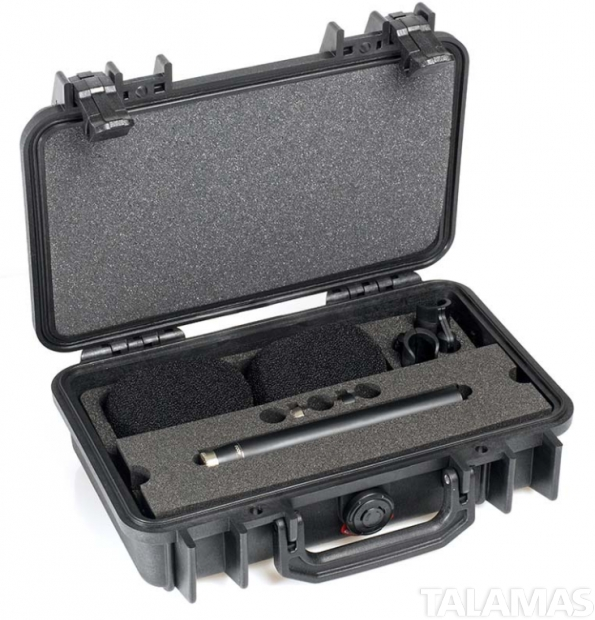 DPA ST4006A d:dicate Omni Stereo Pair with Two Omni Microphone